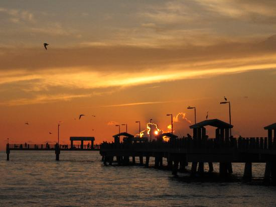 Add to Cart - Clearwater Beach Excursions